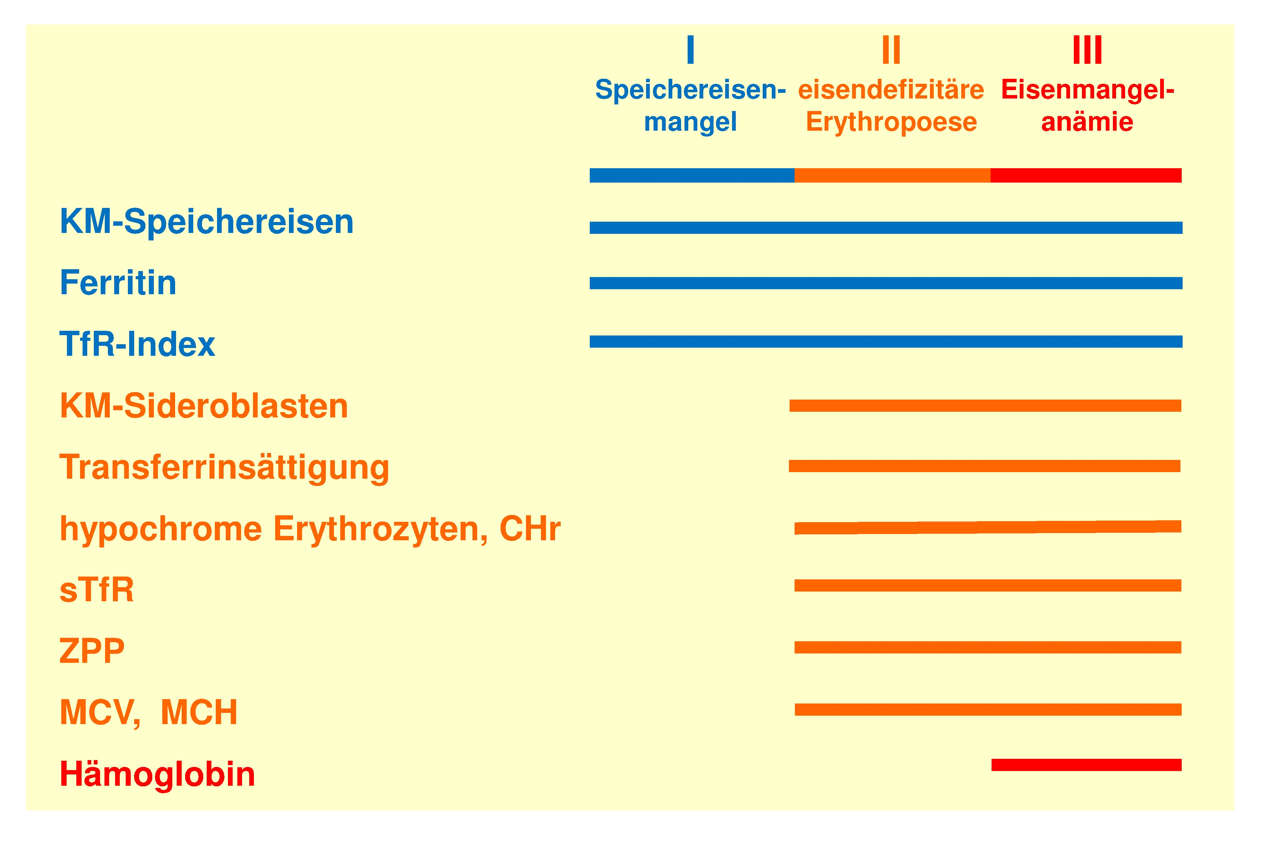 Sensitivität der verschiedenen Eisenparameter bei der Diagnostik des Eisenmangels