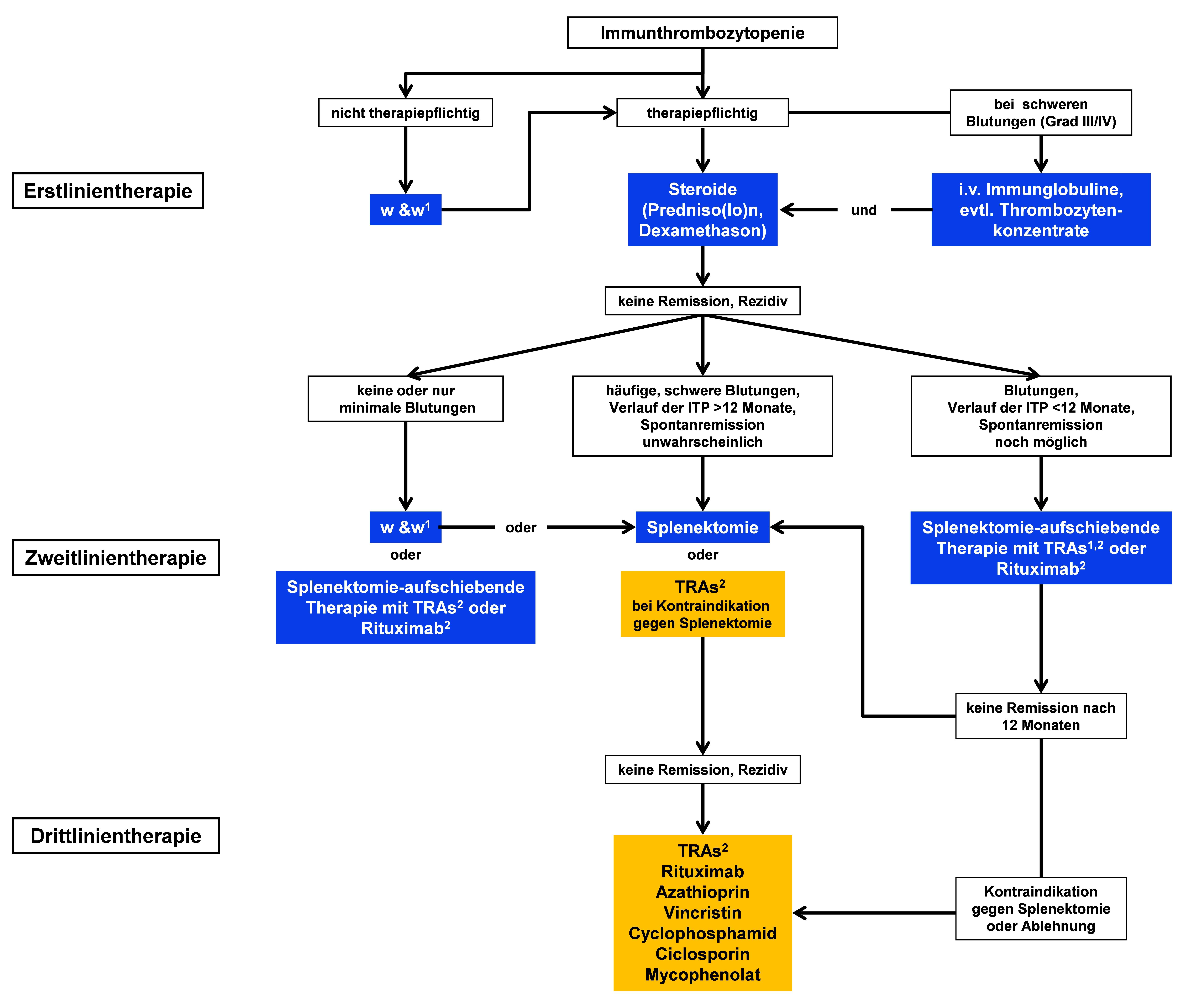 Algorithmus zu Therapieempfehlungen bei Immunthrombozytopenie