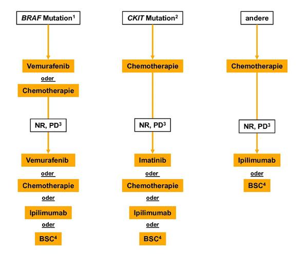 Algorithmus für die Therapie von Patienten mit multiplen Metastasen