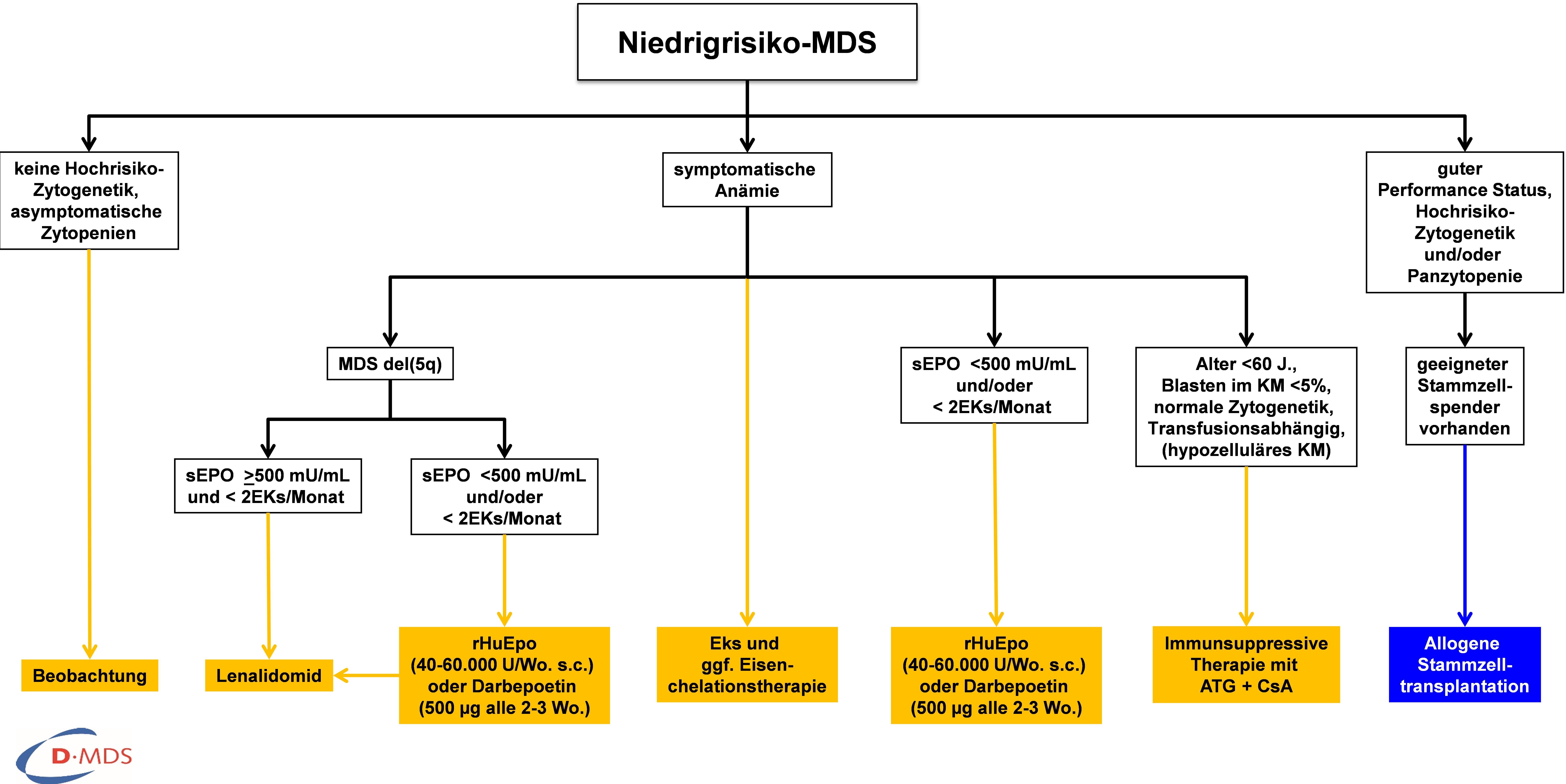 Therapie bei Myelodysplastischem Syndrom (Niedrigrisiko)