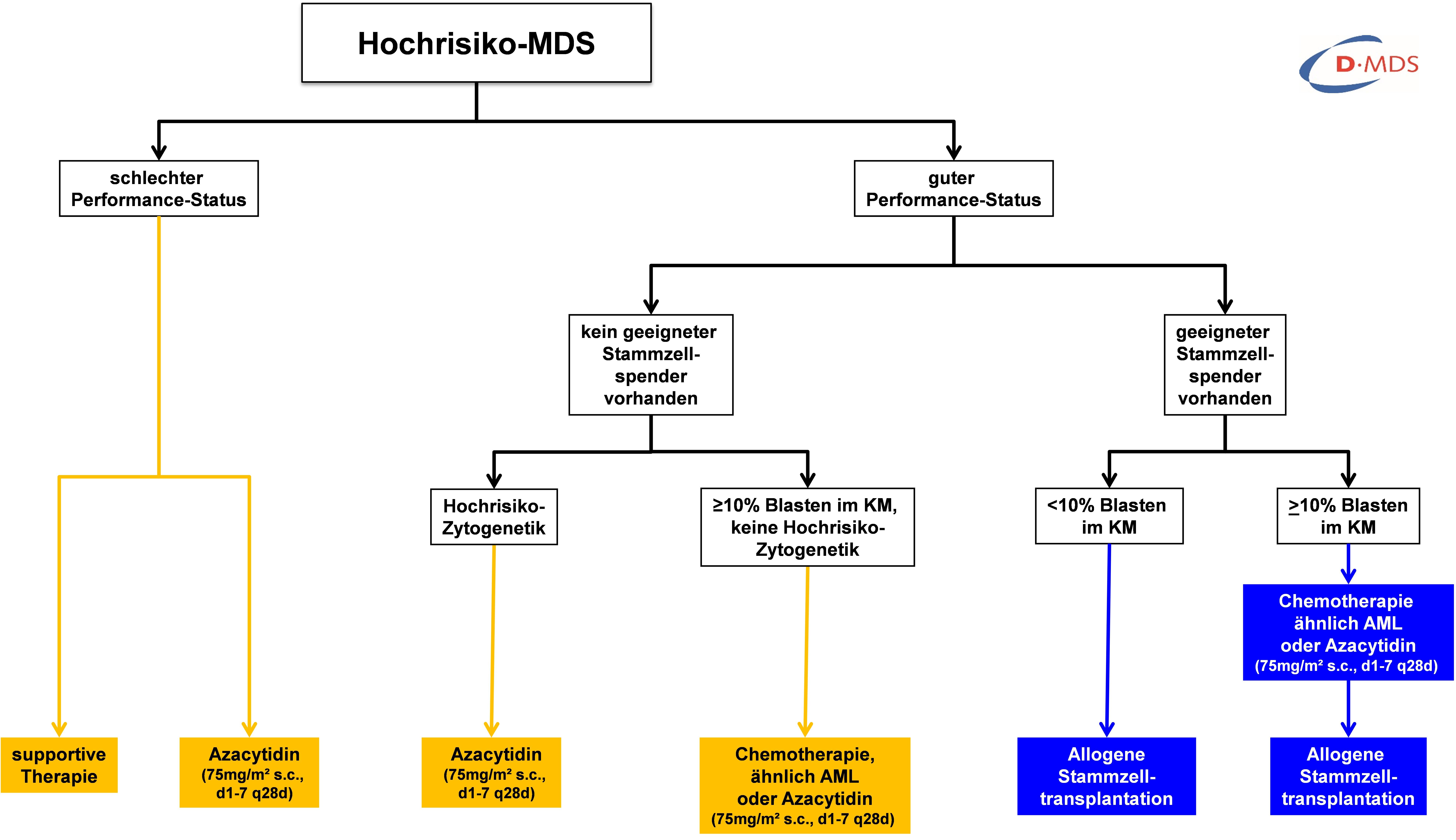 Therapie bei Myelodysplastischem Syndrom (Hochrisiko)