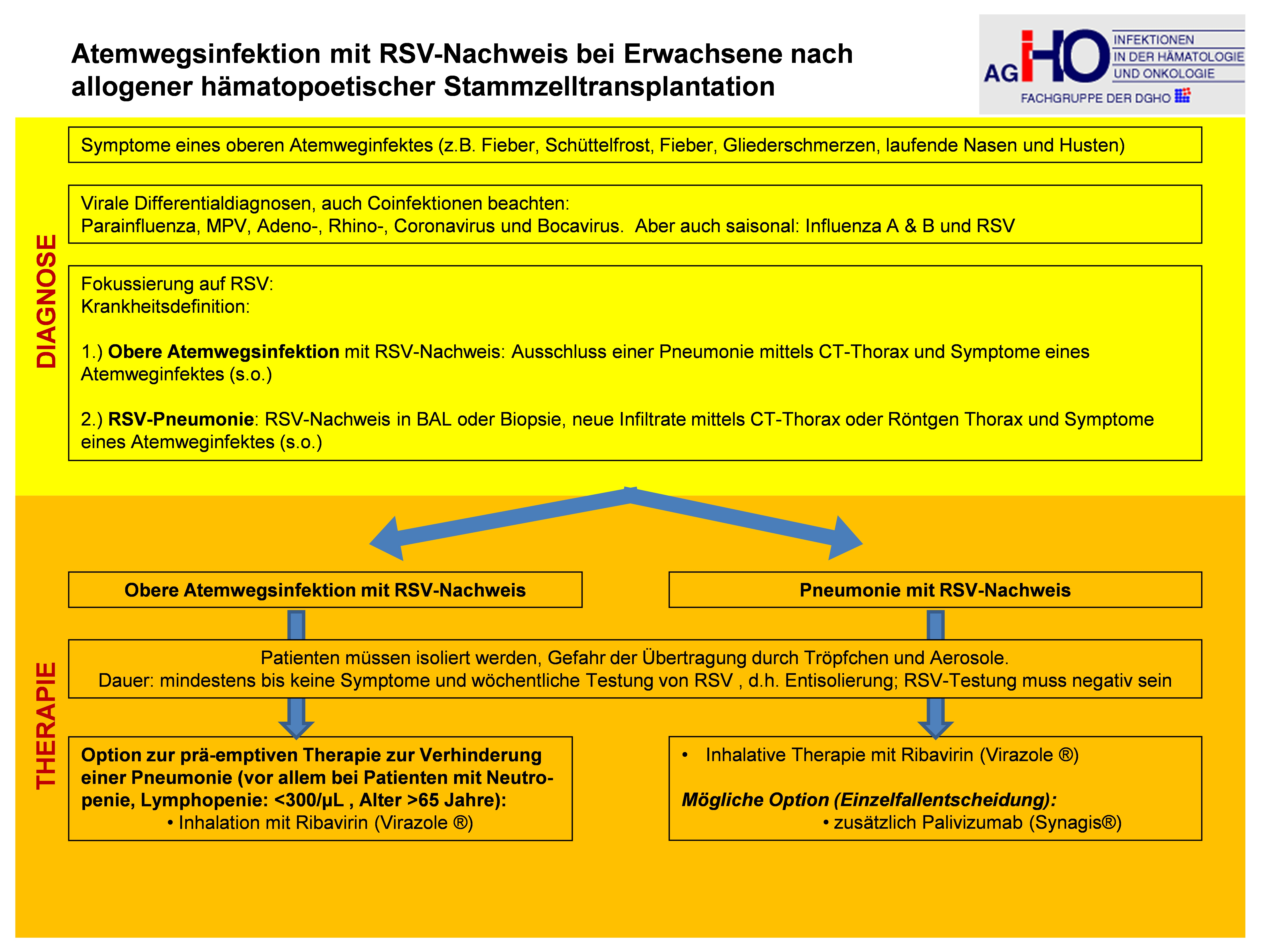 Ateminfektionen mit RSV-Nachweis bei Erwachsenen nach allogener hämatopoetischer Stammzelltransplantation