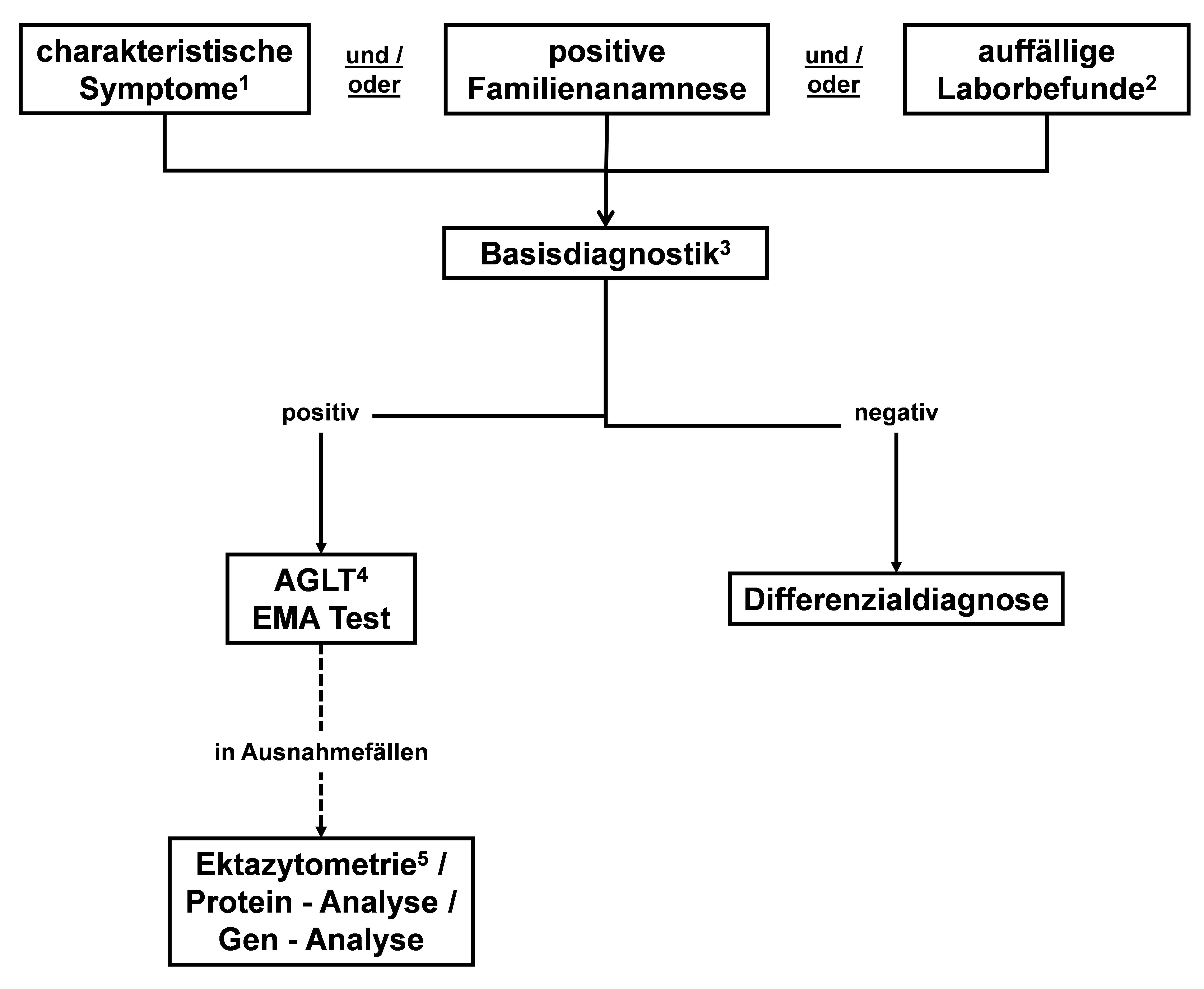 Diagnostischer Algorithmus bei V. a. Hereditäre Sphärozytose