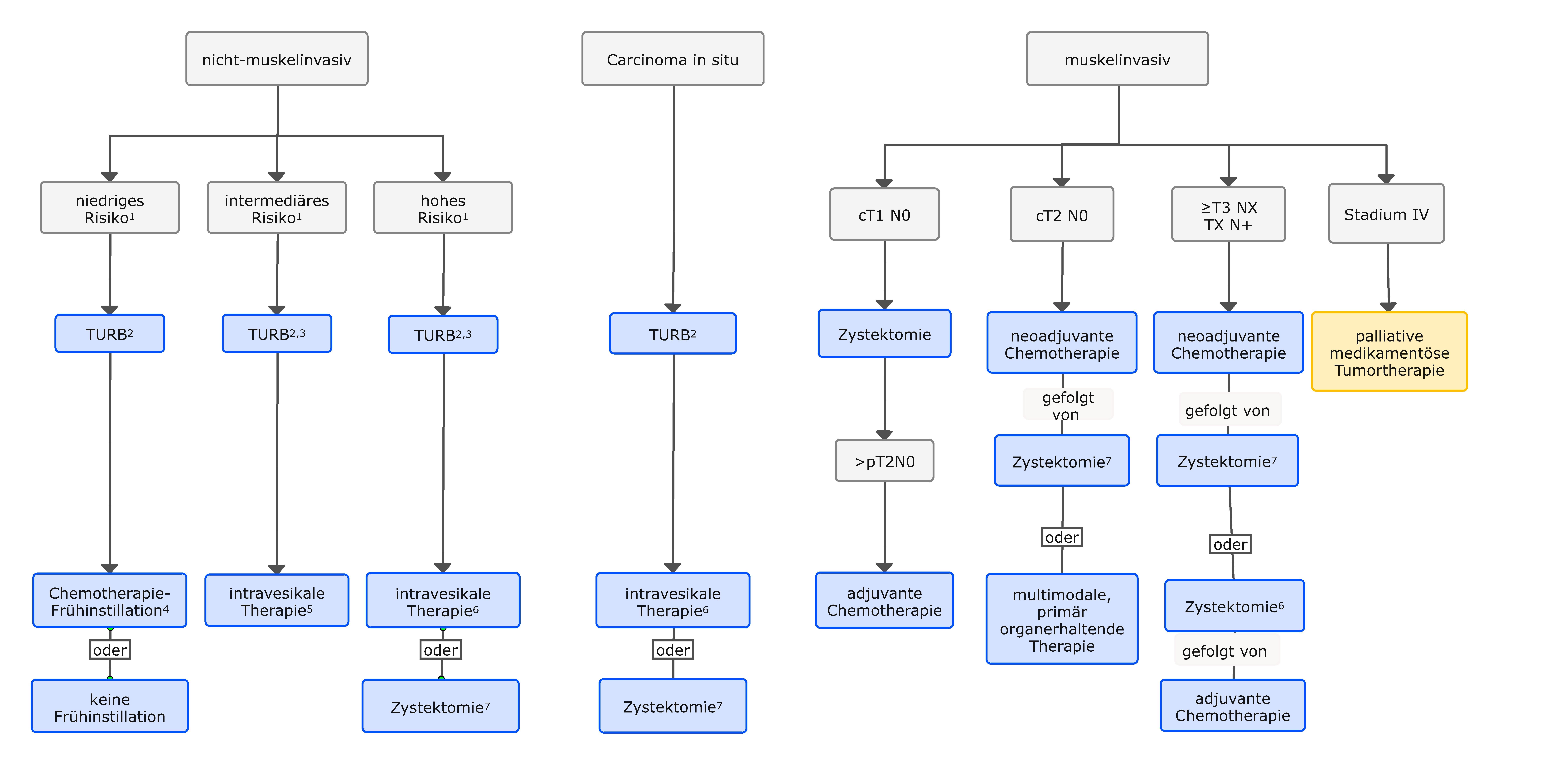 Erstlinientherapie des Harnblasenkarzinoms